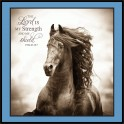 "Horse Inspirational Wall Art 12"" x 12"""